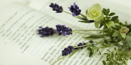 洋書と花の写真
