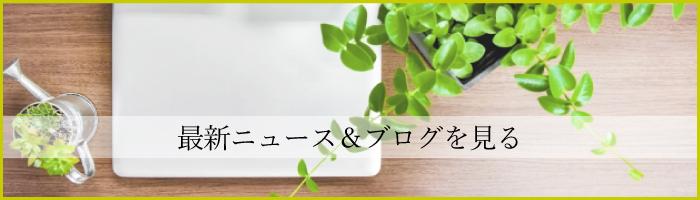 きしもとデザインのニュース&ブログへ