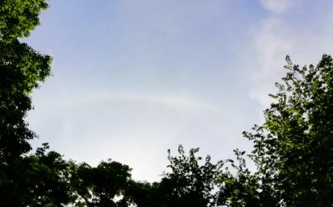 公園から見えた5月の虹の写真