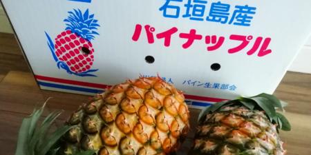 yururuさんからいただいた石垣島パイナップル